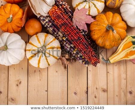 Сток-фото: осень · украшения · тыква · индийской · кукурузы · красочный
