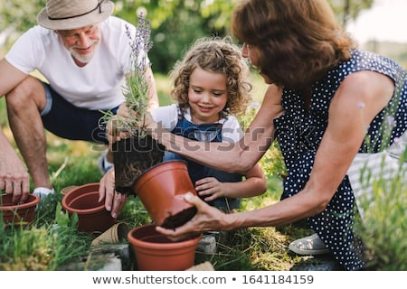 Help in the garden Stock photo © photography33
