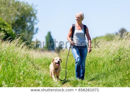 женщину ходьбе собака черный парка Сток-фото © gemphoto