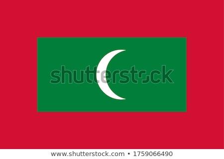 Bandiera Maldive isolato bianco Foto d'archivio © MikhailMishchenko