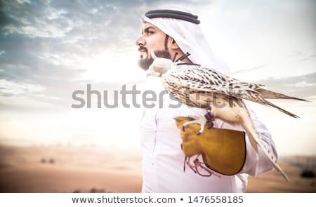Falcoaria deserto ilustração natureza Águia cavalos Foto stock © adrenalina