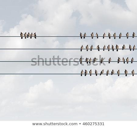 csoport · üzlet · metafora · nézeteltérés · elválás · kettő - stock fotó © lightsource
