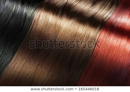 beautiful girl with different hair dye colors Stock photo © svetography
