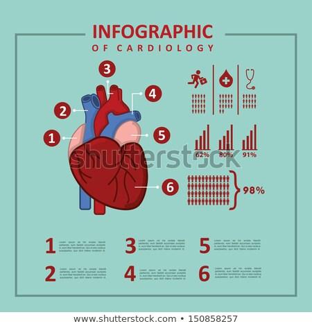 Medicine Medical Statistics Vector Illustration Stock photo © robuart