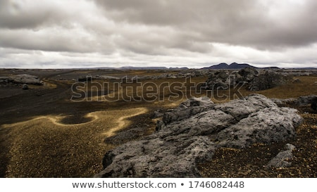 Iceland Landscape with sand dunes overcast day Stock photo © Kotenko