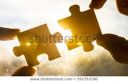 Business Connection Solution Stock photo © Lightsource