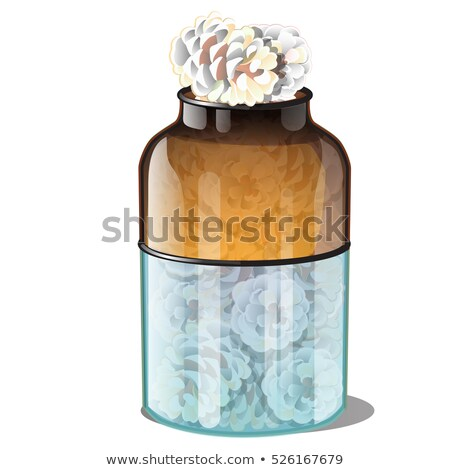 Glass Jar With Pine Cones Covered With Hoarfrost Isolated On White Background. Realistic Style. Attr Stock photo © Lady-Luck