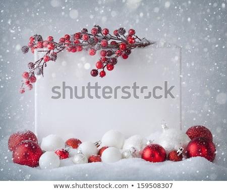 xmas winter notice Stock photo © alexaldo