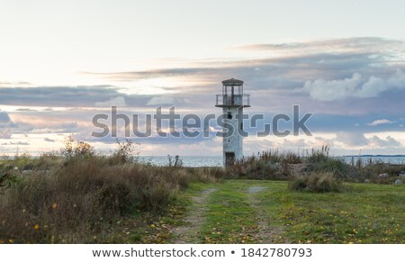 tempestuoso · céu · farol · água · oceano · aves - foto stock © lovleah