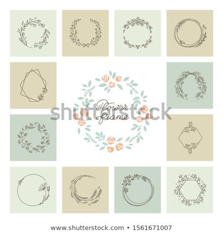 establecer · monos · naturaleza · marcos · ilustración · diversión - foto stock © bluering