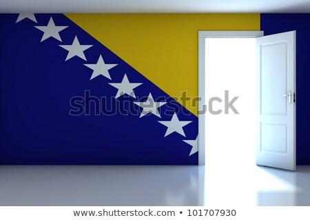 Casa bandera Bosnia Herzegovina blanco casas Foto stock © MikhailMishchenko
