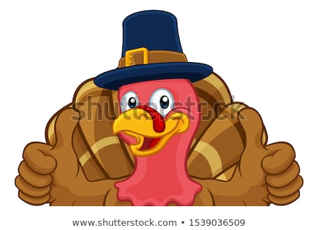 Foto d'archivio: Turkey Pilgrim Hat Thanksgiving Cartoon Character