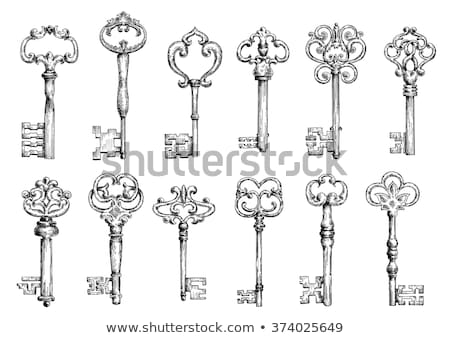 Medieval vintage teclas elementos folha Foto stock © netkov1