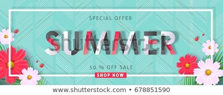 vector · advertentie · banners · promo · ontwerp - stockfoto © robuart