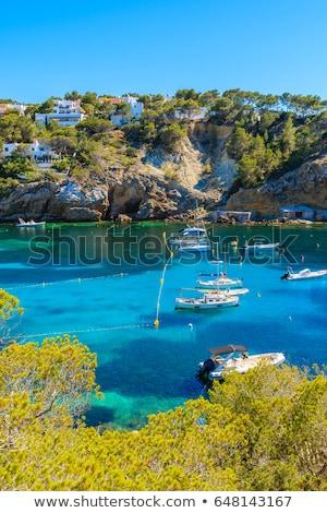 Ibiza Cala Moli beach in Balearic Islands Stock photo © lunamarina