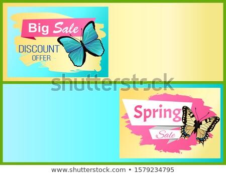 voorjaar · groot · verkoop · 50 · af · promo - stockfoto © robuart