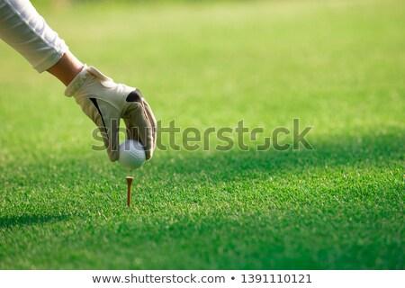 Kadın sürücü golf sahası bakıyor uzun top Stok fotoğraf © Kzenon