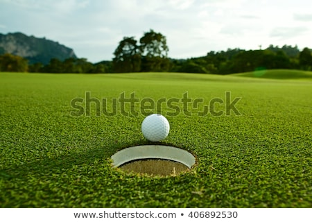 Playing golf ball is near hole Stock photo © ABBPhoto