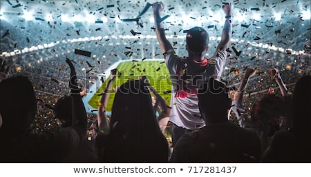 soccer fan stock photo © polygraphus