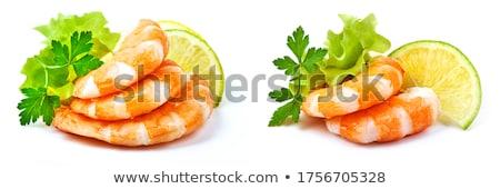 fresco · camarão · branco · prato · verde - foto stock © shutswis