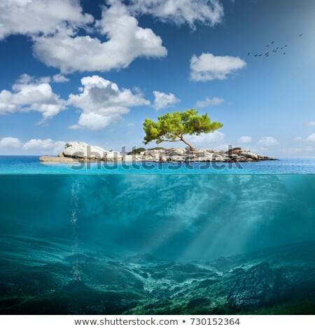 Frumos sub apă vedere ilustrare apă natură Imagine de stoc © colematt