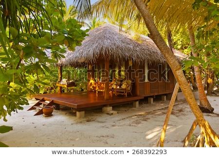 Plaj Maldivler güverte sandalye tropical island deniz Stok fotoğraf © borisb17