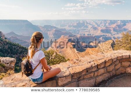 Turista feminino aventureiro desfiladeiro tornozelo Foto stock © lovleah