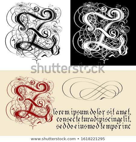 Stock fotó: Dekoratív · gótikus · z · betű · kalligráfia · vektor · eps10