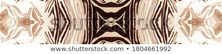 Mandala patronen bruin illustratie achtergrond kleur Stockfoto © bluering