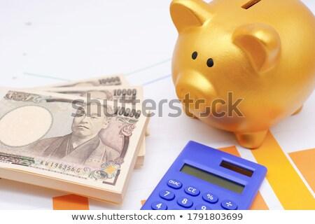 Banku piggy jen różowy w górę Zdjęcia stock © albund