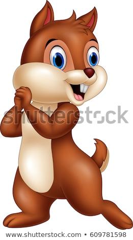Cartoon chipmunk isolated on white background Stock photo © tigatelu