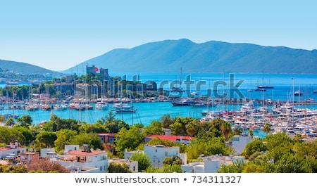 török · jacht · kikötő · zászlók · kék · ég · vitorlázik - stock fotó © lypnyk2