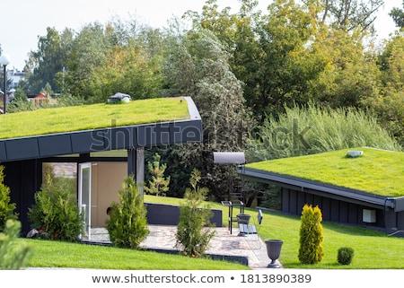 Zöld tető kicsi ház épület otthon Stock fotó © Ciklamen