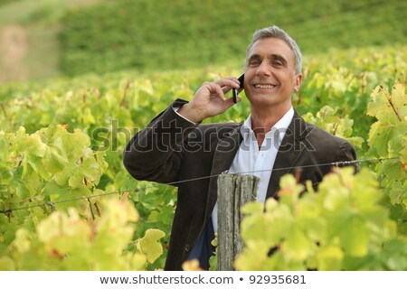 A mature man over the phone in a vineyard. Stock photo © photography33