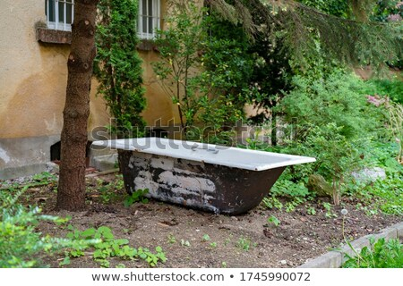 古い バスタブ フィールド 捨てられた 国 ヴィンテージ ストックフォト © jeremywhat