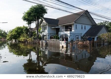 Ház árvíz Thaiföld természet utca zöld Stock fotó © Witthaya