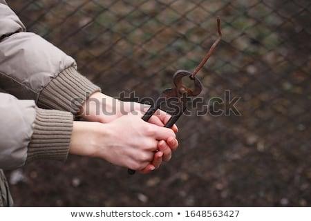ногтя · щипцы · белый · стали · ухода · ножницы - Сток-фото © taigi