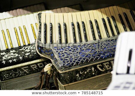 Stock photo: Shiny accordeon have white and black button
