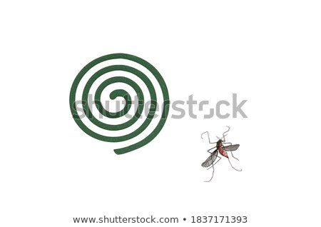full frame mosquito coils and dead mosquito Stock photo © ozaiachin