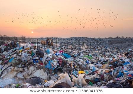 toxique · déchets · forêt · environnement · nature · métal - photo stock © mahout