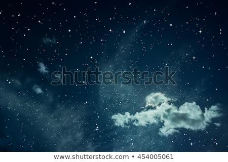 Masal güzel dekoratif küre karanlık mavi Stok fotoğraf © grechka333
