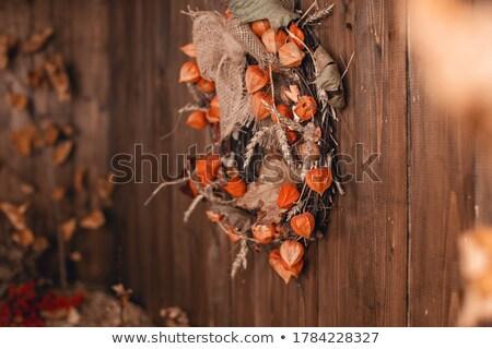 穀物 アレンジメント 小麦粉 木製 側位 ストックフォト © MKucova