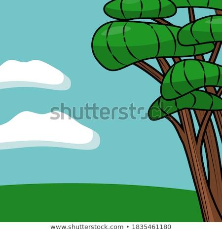 Mooie groene cartoon weide blauwe hemel bloemen Stockfoto © adrian_n