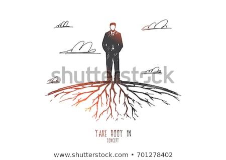 take root stock photo © lightsource