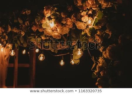 Bloemen tuin bloem voorjaar natuur Stockfoto © Frankljr
