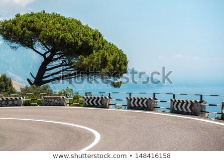 Via Nastro Azzurro, Amalfi Coast. Italy Stock photo © amok