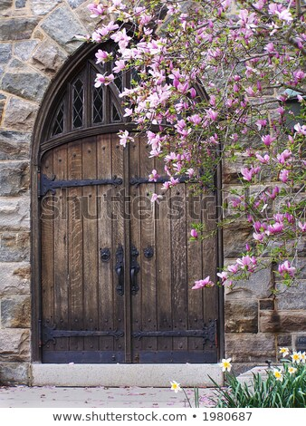 Magnolia Gateway Stock photo © rghenry