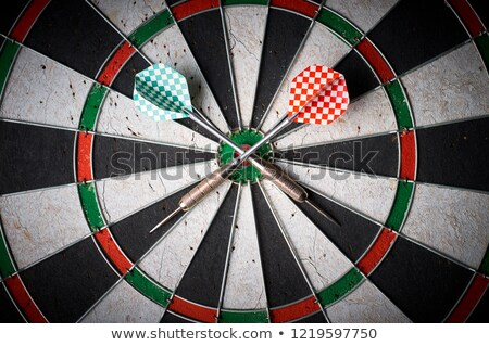 Lie - Arrows Hit in Red Mark Target. Stock photo © tashatuvango