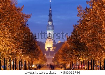 Kule görmek bazilika binalar mavi güneşli Stok fotoğraf © EFischen
