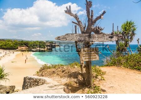 Paradise beach at Nusa Lembongan, Indonesia Stock photo © dinozzaver
